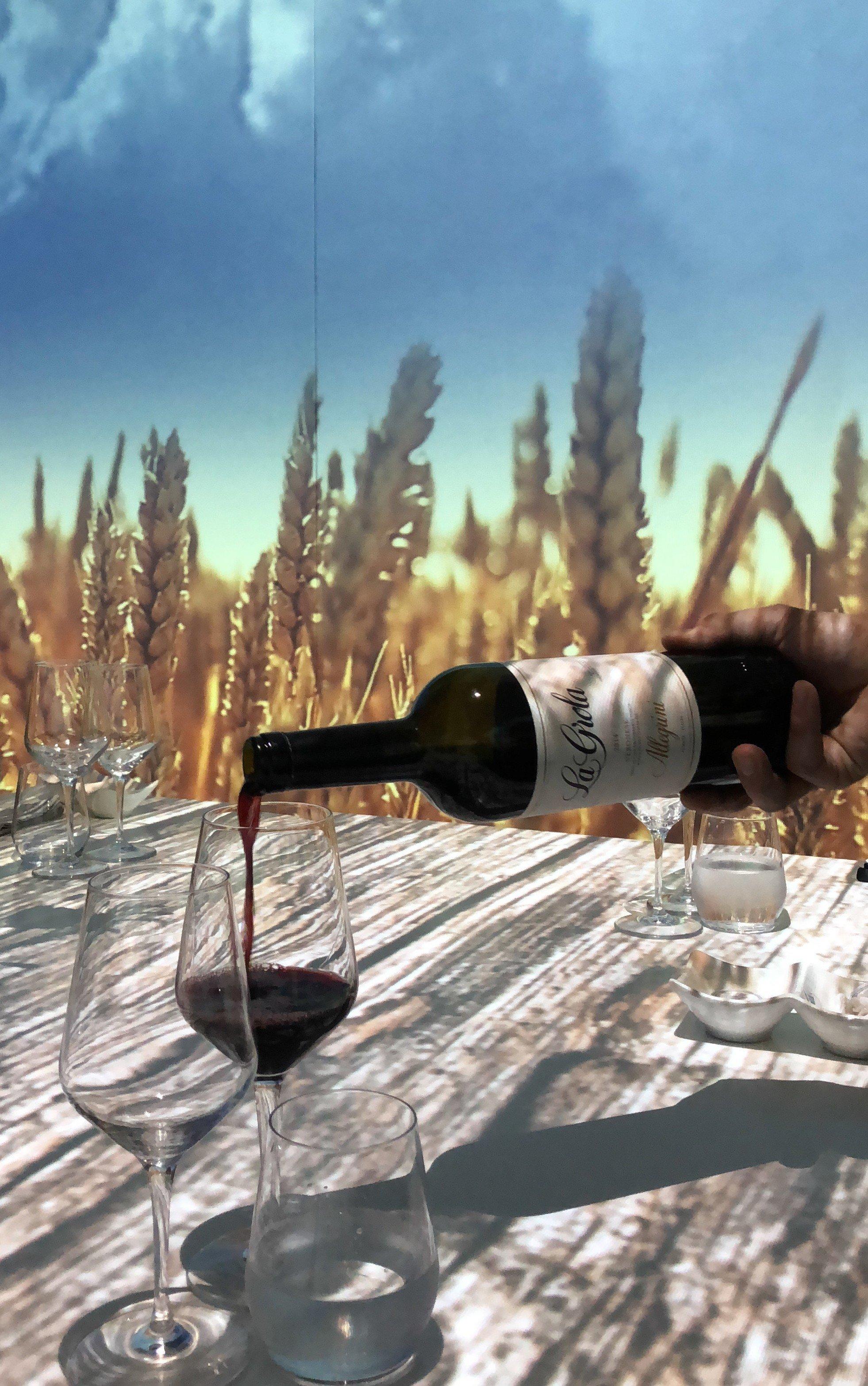I vini di Allegrini per l'Immersive Show Dinner