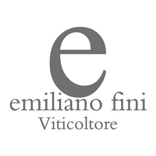 icon-emiliano-fini