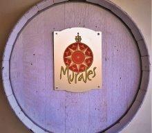 Vini Murales…una cantina gioiello a due passi dalla Costa Smeralda