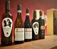 I vini di Cantina Poggio Cavallo, nati dove riposano gli Etruschi